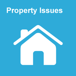 Property Issues Category