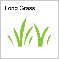 Long Grass Category