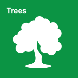Trees Category